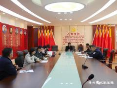 隆阳区法院召开2019年度支部书记抓基层党建工作述职评议考核会